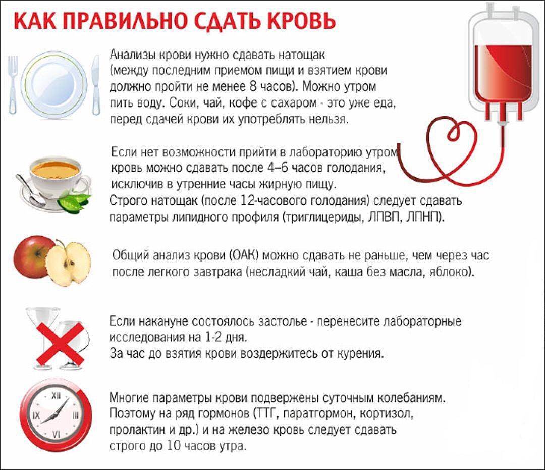 Анализ крови за сколько часов нельзя есть